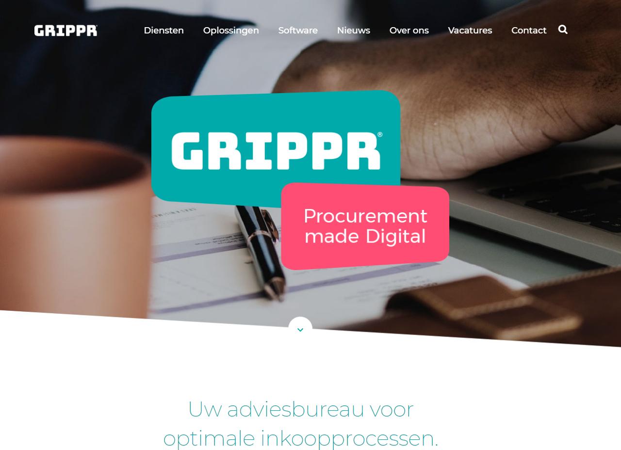Rhinoz (web)tekst + advies